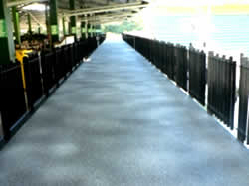 Stadium 'speckled' anti-slip coated